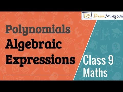 Algebraic Expressions - Polynomials  : CBSE Class 9 IX Mathematics