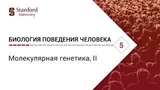 Биология поведения человека: Лекция #5. Молекулярная генетика, II [Роберт Сапольски, 2010. Стэнфорд]