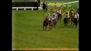 1980 daily express triumph hurdle heighlin