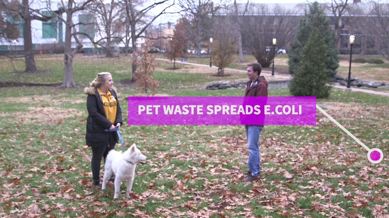 PET WASTE (VIDEO TWO) - PSA 2019 - City of Columbia Missouri - Office of  Sustainability
