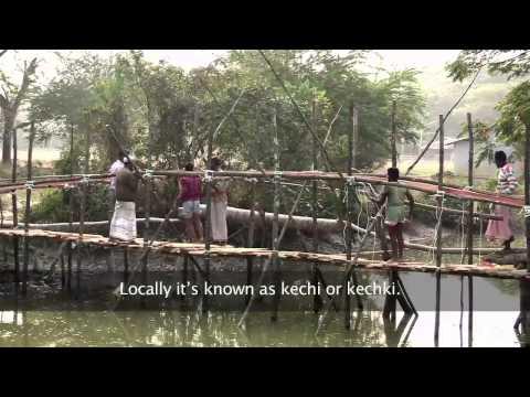 Amrai Pari - How Lives are Improving in Bangladesh - BBC Media Action
