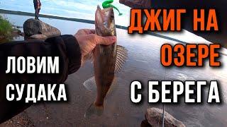 Джиг на озере как поймать рыбу с берега