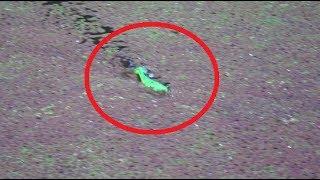 草の上のエサが吸い込まれる瞬間。【大爆発】 シエスパ 検索動画 28