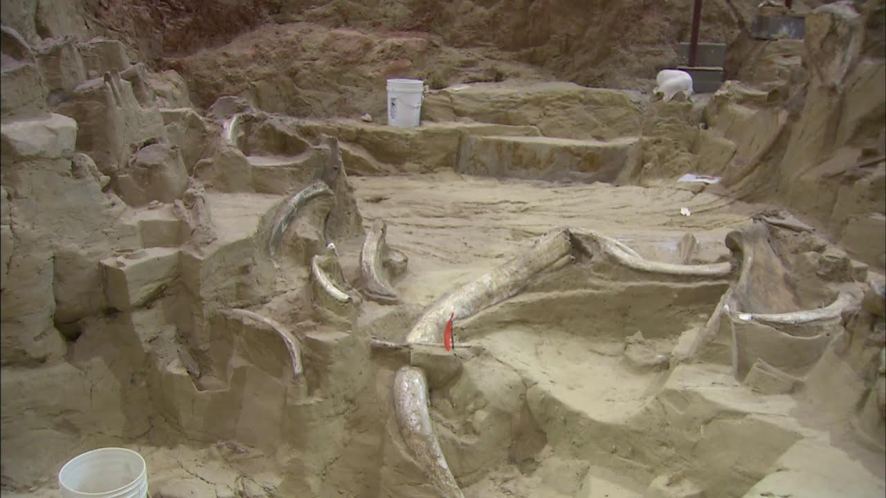 Landscapes of South Dakota: Mammoth Site