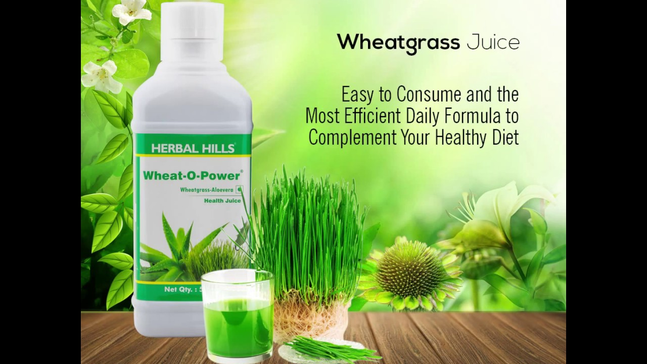 Wheatgrass - Nutritional Facts & Top