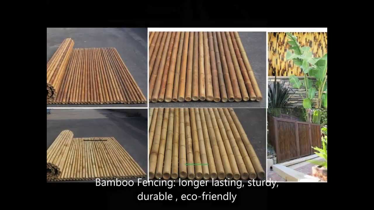 Buy Bamboo Cane Poles Stalks Thatch Fencing Mats 4sale