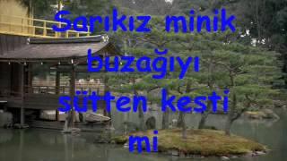 Türkçe Alt Yazılı Klip Arkadaşım Eşek.wmv