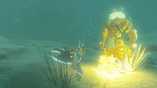 We Give A Gold Lynel a Birthday Present - Zelda Breath of the Wild