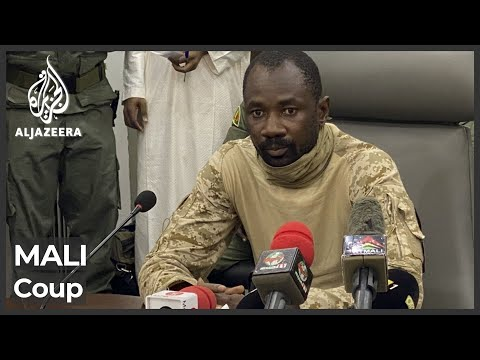 Mali's former coup leader takes power after president's arrest