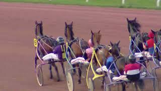 Vidéo de la course PMU PRIX GLAMOUR FIGHTER
