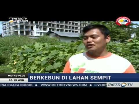 Menggerakkan Urban Farming Melalui Jakarta Berkebun, Part 1