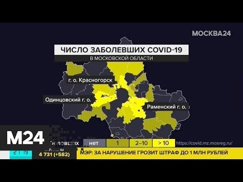 За сутки увеличилось число зараженных в Московской области - Москва 24