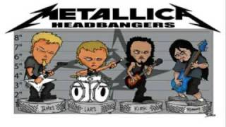 Metallica- so fucking what