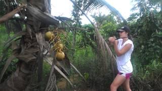 GO! GUYANA 2015