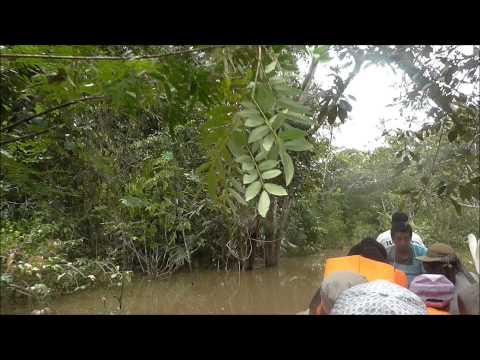 IQUITOS PERU 2014 RIO AMAZONAS 1