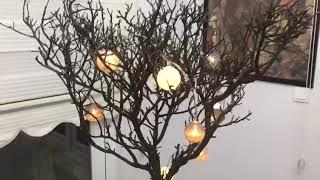 Ev dekorasyonu fikirleri Dekorasyon fikirleri Dekorasyon fikirleri Kuru ağaç dalından Ev süsü yap