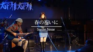 「和歌うた」早苗ネネさんのLIVEパフォーマンス。 2016年3月19日に京都...
