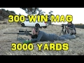 300 Win Mag @ 3006 yards