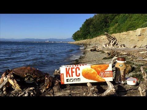 KFC $5 Fill Ups (Extra Crispy Tenders & Kentucky Baked Beans) Review