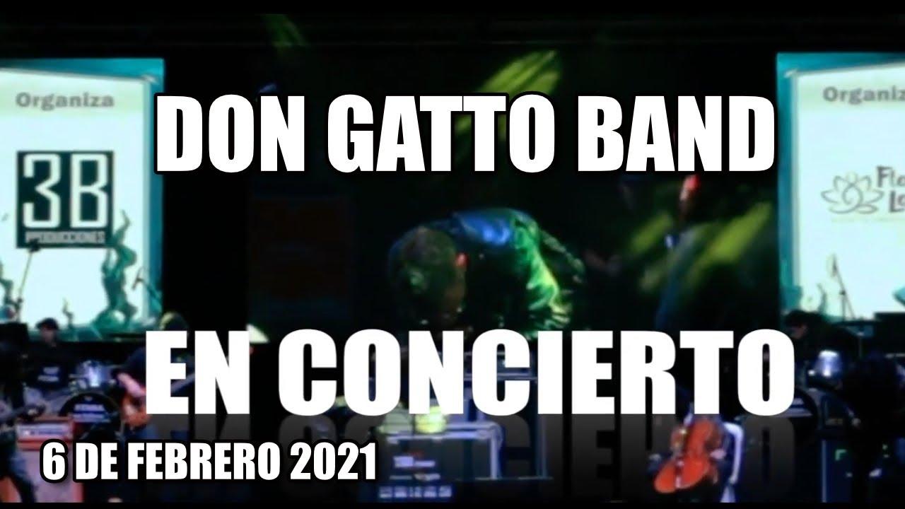 6 DE FEBRERO CONCIERTO DON GATTO BAND 6 DE FEBRERO 2021