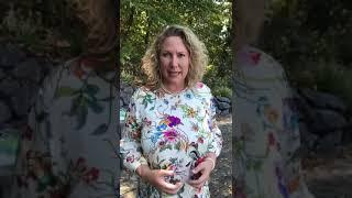 Besuch bei der Bad Kreuznacher Landrätin Bettina Dickes