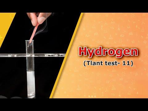 Hydrogen(Tlant test-11)
