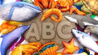 Colorful Sea Creatures~! Learn Sea Creature Names with Kinetic Sand