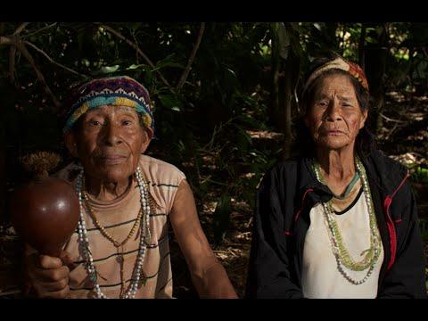 Pai Tavytera Music : Guarani Chant.