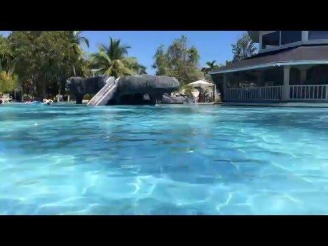 セブのマクタン島のリゾートホテル・プランテーションベイのプールバーの飲んでみたよ