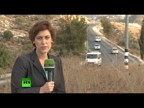 «Хезболла» - политическая организация или террористическая группировка?
