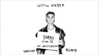 Sorry   Justin bieber & Skrillex ft Blood HD 320 kbps   FREE DOWNLOAD