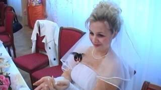 бабочки Воронеж свадьба тамада ЗАГС видеосъемка фото