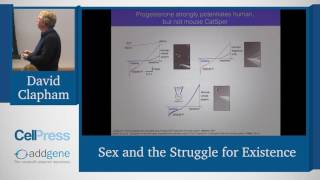 """David Clapham speaks about """"Sex and the Struggle for Existence"""" at the Cell Press/AWIS LabLinks meeting on The Gender of Science and the Science of ..."""
