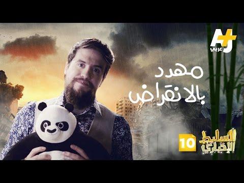 السليط الإخباري الموسم الثاني - الحلقة 10 - مهدد بالانقراض