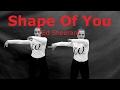 Download Shape Of You (Ed Sheeran)The Slovak Waakers / choreography /dance video