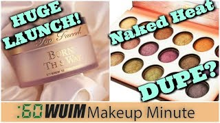 TOO FACED Summer Launches TODAY! + A DUPE for the UD Naked Heat from BH Cosmetics?   Makeup Minute