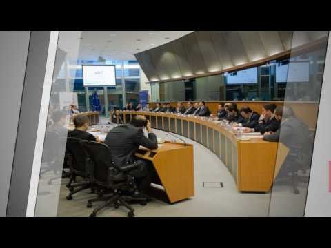 UNITEE Roundtable: New Europeans & their potential for the EU