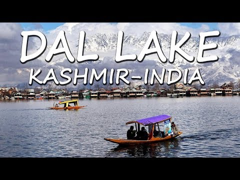 Dal Lake in Kashmir, India | Beautiful  Lake of  Srinagar