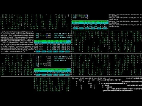 2,5 miliona ataków. Rosyjscy hakerzy celują w polskie komputery
