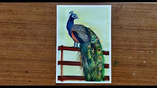 How to paint a Peacock | Step by Step Acrylic Painting