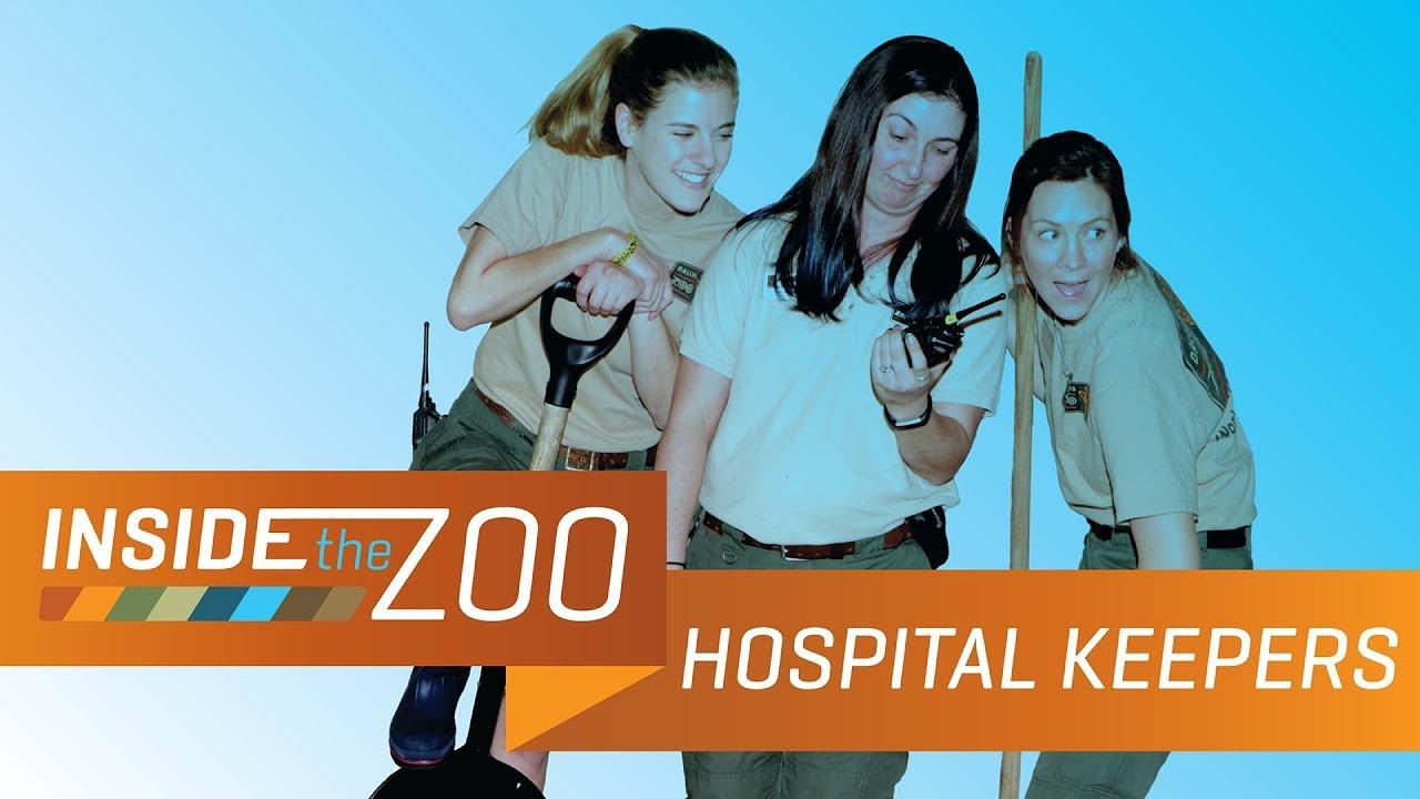 Veterinarian | Dallas ZooHoo!