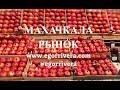 Рынок Махачкалы. Контрасты и изобилие вкусов. Егор Ривера