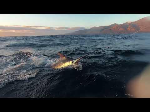 Cape Verde Blue Marlin [2018] - Ep. 1: The Season Begins