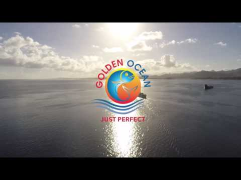 Golden Ocean Fish Limited