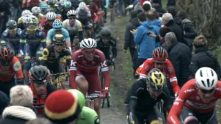 Nils Politt - From School Leagues to the WorldTour