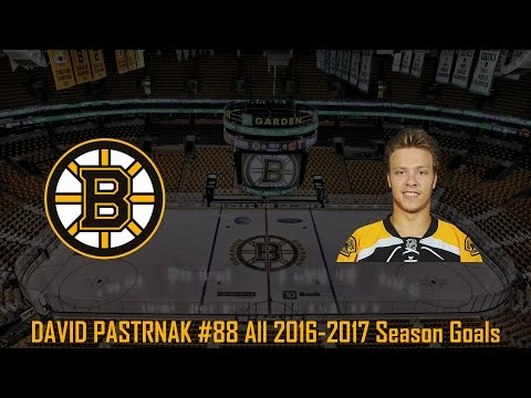 David Pastrnak - NHL Season 2016/2017 (All Goals)