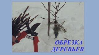Обрезка плодовых деревьев: видеоотчет-2. Первая поездка на дачу после зимы 2016.(, 2016-03-31T11:40:14.000Z)