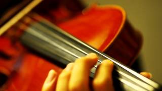 """""""My Heart Will Go On"""" - Celine Dion (Violin Cover)"""