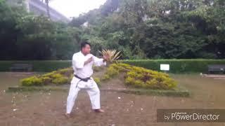 Enshin kata