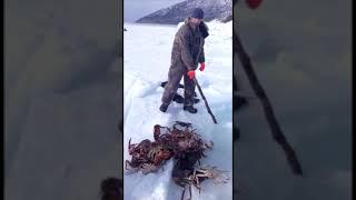 Подборка приколов на рыбалке на охоте и не только 2020